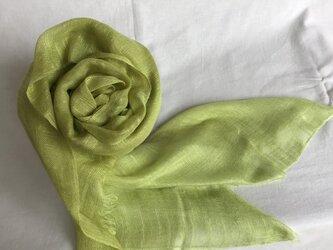 草木染め 絹ストール スズメノエンドウの画像