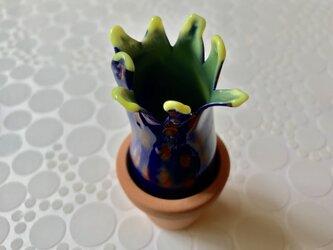 サボテンの花③の画像