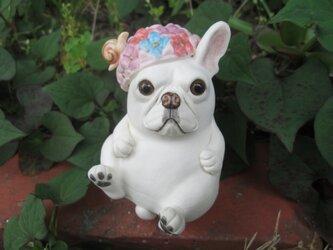 あじさい帽子★フレンチブルドッグ①の画像