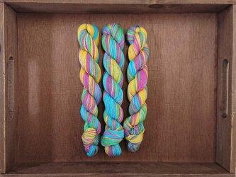 インダスからの贈り物【オリジナル段染め糸 細】(153)1本の画像