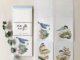 【一筆箋】木の実きのまま-野鳥カラ類の画像