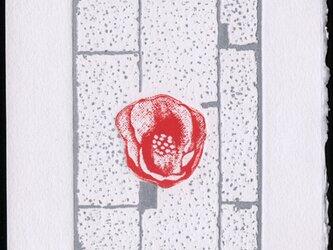 椿・2020/ 銅版画 (作品のみ)の画像