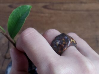 Hathor陶装具R 指輪 Bの画像