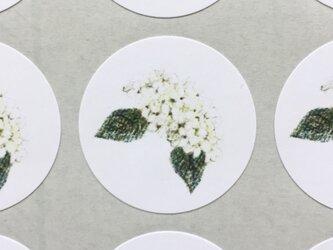 白い紫陽花のシールの画像