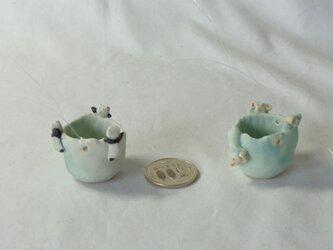 ミニ植木鉢5個セットの画像