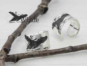 C-WhaleW9  銀クジラのイヤカフ 幅9mm <鏡面/ツヤ消し 選択可>の画像