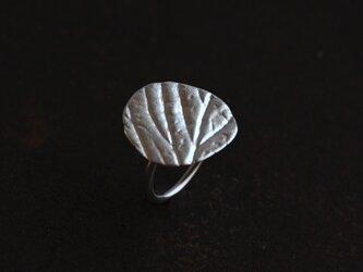 苺の葉のリングの画像