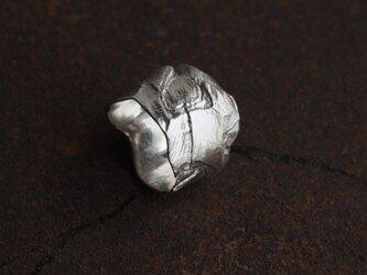 松の樹皮のリングの画像