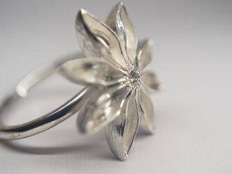 star anis diamond ringの画像