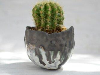陶器鉢 5の画像