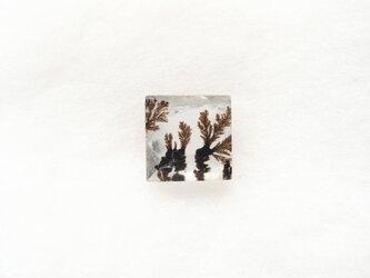 テンドリック・クォーツ スクエアー・バフトップ 10.0mmの画像