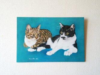 猫イラスト「青い猫 なかよし2匹」原画の画像
