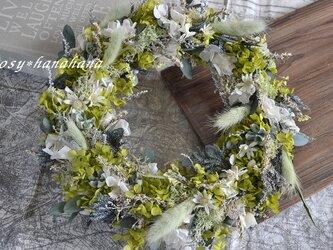 新緑の風wreathの画像