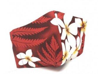 ハワイアン ファブリック ファッション・3Dマスク(扇型) プリメリア レッド Lサイズ[mfm3Q-fb009L]の画像