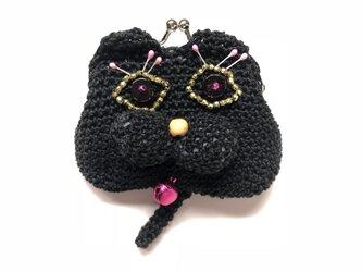 目がランランの黒猫の画像