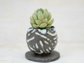 陶器鉢 0の画像