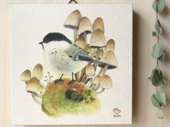 「コガラとキララタケ」の15x15cm パネルの画像