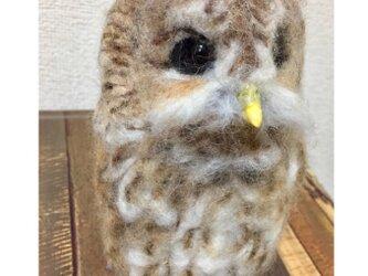 羊毛フェルトのモリフクロウの画像