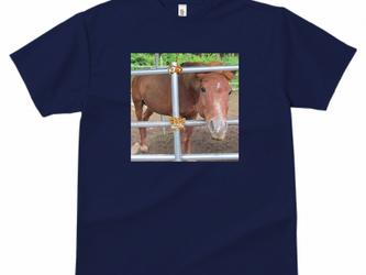 対州馬ひん太 GLIMMER ドライTシャツCの画像