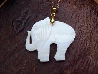 ネックレス シェルでできた ゆるかわいい象さんモチーフの画像