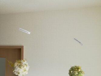 フランネルフラワーとモスぼうるのオーナメント(ホワイト)の画像