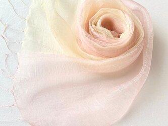 羽衣【うい】シルク*薄桜色×淡黄色*オーガンジーストールの画像