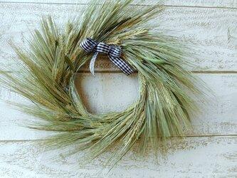 (送料無料) 麦の穂リースの画像