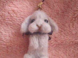 羊毛フェルト うさぎの画像