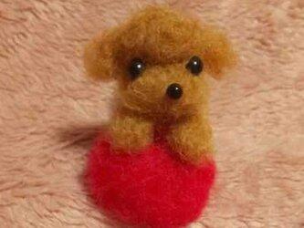 羊毛フェルト トイプードルの画像