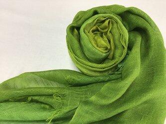 草木染め 絹ストール 緑グラデーションの画像