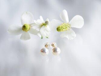 パールピアスK18YG 色:ホワイトの画像
