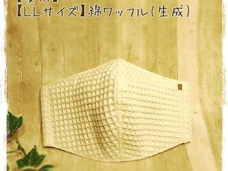 【夏用】(LL)綿ワッフル(生成り×GR)*ワイヤ入立体マスクの画像