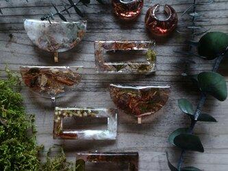 coffee 植物のイヤーカフの画像