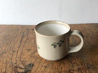 白化粧色絵 マグカップ ブドウの画像
