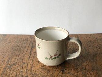 白化粧色絵 マグカップ クズの画像