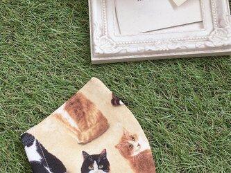 夏向け 立体マスク  キッズ オトナ 猫の画像