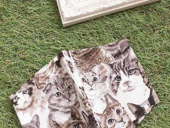 立体マスク  キッズ オトナ コットン 猫の画像