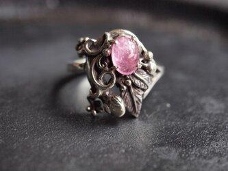 蜥蜴とピンクトルマリンのリングの画像