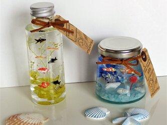 「父の日ギフト」金魚鉢の中で泳ぐ金魚たちと熱帯魚②の画像