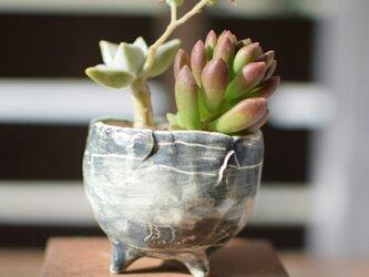 陶器鉢 19の画像