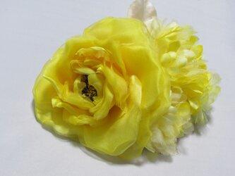 大輪バラ小花つきの画像
