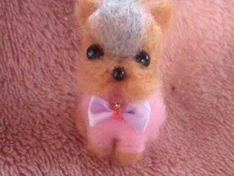 羊毛フェルトヨーキーちゃんの画像