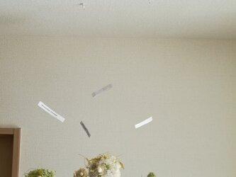フランネルフラワーとモスぼうるのしずく(クリーム) プリザーブドフラワー ドライフラワーの画像
