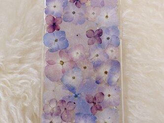 【全機種対応】紫陽花うめつくし♡押し花スマホカバー♡iPhoneからAndroidまで全ての画像