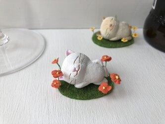 ここだけはパラダイス猫さん 白の画像