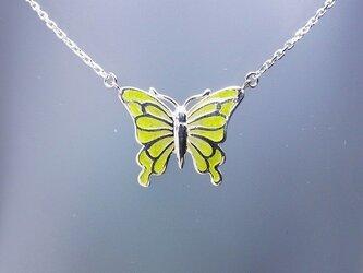 「Butterfly」の画像