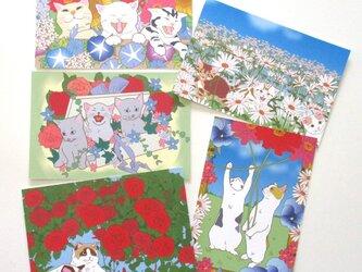 猫と花のポストカードセットの画像