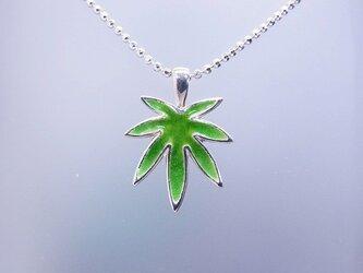 「Leaf」の画像