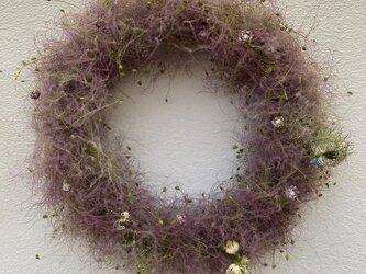 初夏のリース スモークツリーのリース の画像