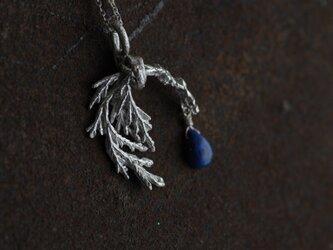 糸杉とラピスラズリのネックレスの画像